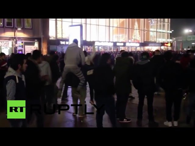 Cologne sex attackers taunted police tearing up immigration docs - New police report