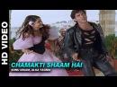 Chamakti Shaam Hai Yaadein Sonu Nigam Alka Yagnik Hrithik Roshan Kareena Kapoor