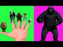 Finger Family Rhyme - KING KONG V/S LION,COW,BEAR,DOG,RABBIT Version | Funny Children Poems In 3D