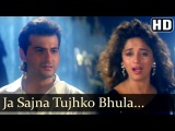 Клип Ja Sajna Tujhko Bhula к фильму Принц Раджа - Санджай Капур и Мадхури Дикшит