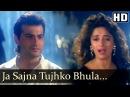 Ja Sajna Tujhko Bhula Raja Songs Madhuri Dixit Sanjay Kapoor Udit Narayan Alka Yagnik