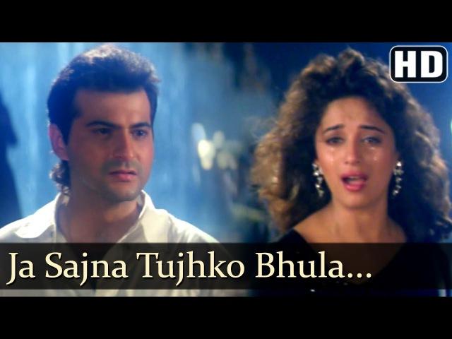 Ja Sajna Tujhko Bhula | Raja Songs | Madhuri Dixit | Sanjay Kapoor | Udit Narayan | Alka Yagnik