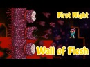 Terraria - Wall of Flesh kill on the First Night!
