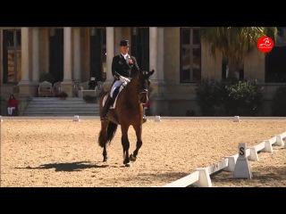 Carl Hester NIP TUCK - Grand Prix Special - CDI3* Real Escuela Jerez de la Frontera - Topiberian