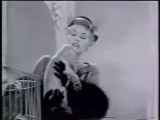 How Much Is That Doggie In The Window - Patti Page