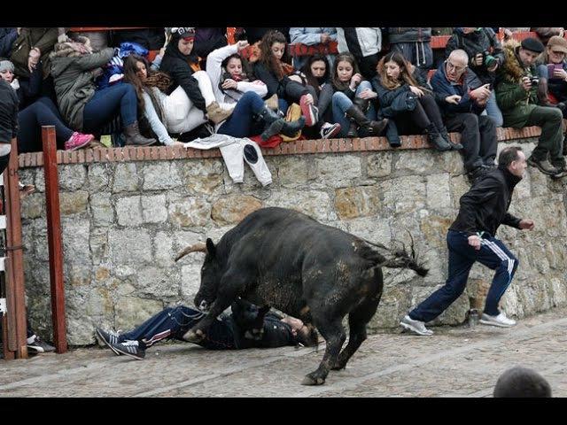 ¡IMPACTANTES COGIDAS Y SUSTOS DE TOROS! | TorosPlay