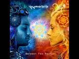 ZYMOSIS - Quiet Sadness