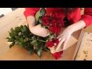 Розы от Голландского цветочника