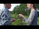 Мичурин современности! Гений - садовод! Фролов Ю.А. в питомнике у профессора Агеева. Яблоневый Сад.