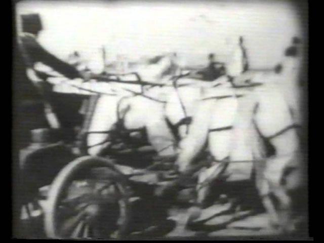 1939г. Довоенный ЦМИ. Улов, Заморское Чудо и др.