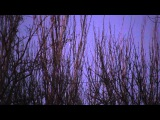 НЛО в Мариуполе