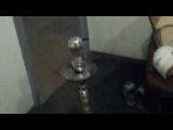 timur_shaker video