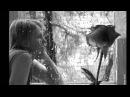 Николь Ю (Nika) - Кому сказать (new 2012)