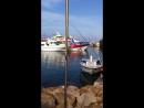 Старый порт Айя Напа Кипр