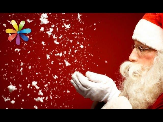 Фокусы которыми вы удивите близких в новогоднюю ночь Все буде добре Выпуск 732 от 31 12 15