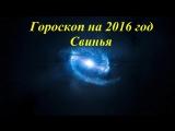 Восточный гороскоп. Гороскоп на 2016 год Свинья