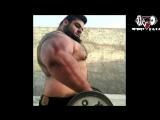 Иранский Халк - Саджад Гариби