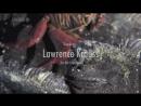 Лоуренс Краусс — Реальность освобождает, если ты однажды принимаешь ее