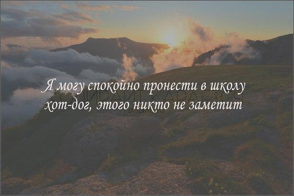 TBv87rSTshI.jpg