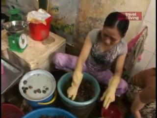 Дикие блюда - Вьетнам