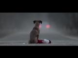 «Подарок» — ролик, который заставил наше сердце сжаться
