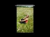 Со стены друга под музыку Александр Лир Feat. Fill - Моя богиня. Picrolla