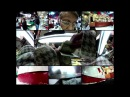 Xenia Rubinos - Hair Receding (Official Video)