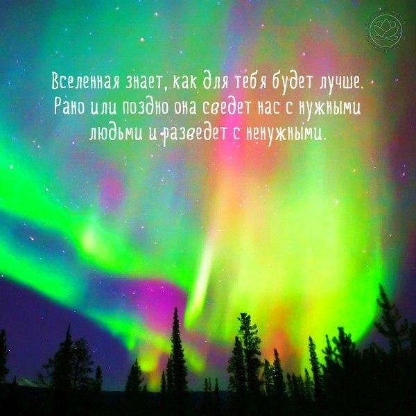 https://pp.vk.me/c633330/v633330330/2fef4/fAUFb2orwDg.jpg