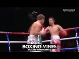BOXERS PUNCHED THROUGH THE ROPES #7 (Boxing Vines) | vk.comboxingvines