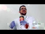 Рекламный ролик – смелый эксперимент над семечками «Жар-птица»