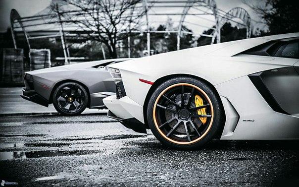 Lamborghini ♥