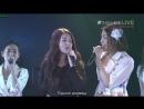 Sougen no Kiseki. Team K. (ex AKB48) [перевод]