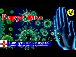 ВИРУС ЗИКА 2016 Что это | История, Симптомы, есть ли эпидемия