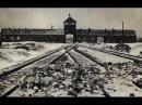 В. В. Пякин_Почему Гитлер устроил ХОЛОКОСТ евреев