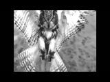 Strange Cargo - William Orbit maceo plex remix