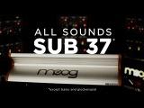 All Sounds Moog Sub 37