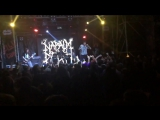 NAPALM DEATH - Nazi Punks Fuck Off (Live in MOSCOW 08.10.2015)