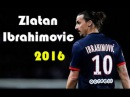 Zlatan Ibrahimovic ● Magic Goals Skills ● 2015/2016 HD