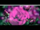 Роза Живое Граффити
