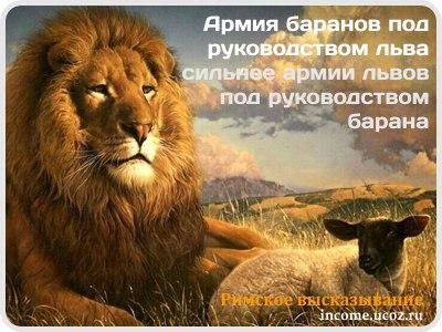 Фото №456240457 со страницы Валерия Ярышева