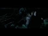 Памяти Северуса Снейпа    In memory of Severus Snape