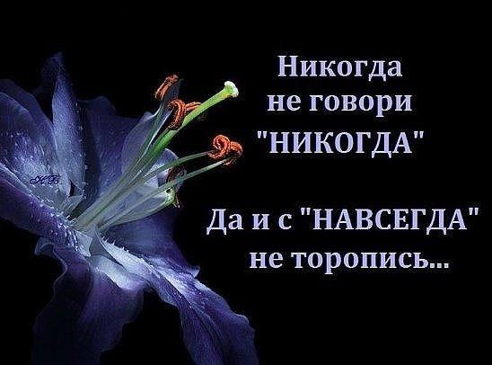 https://pp.vk.me/c633417/v633417870/2e273/F_qzsMuPNHU.jpg
