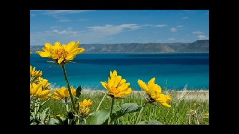 Релакс Спокойная музыка для души Планета земля Очень красивый клип