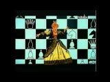 Юрий Гальцев и Елена Воробей    Люди шахматы — Видео@Mail Ru