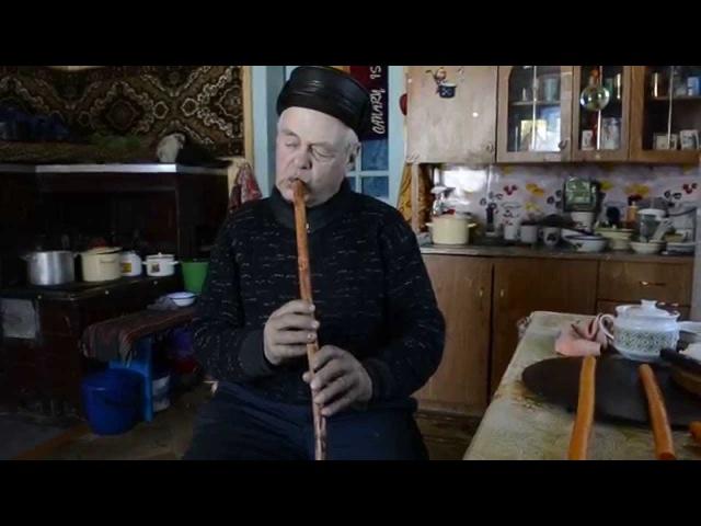 Михайло Тафійчук денцівка теленка флояра