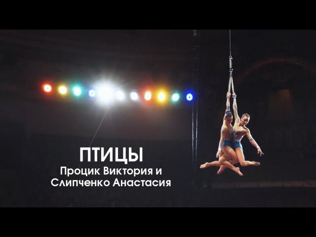 Птицы Цирковой номер в жанре воздушной акробатики