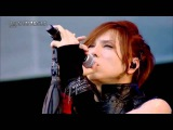 Acid Black Cherry a nation 2015   Yes イエス