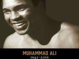 Muhammad Ali Highlights Tribute I 1942-2016 (HD)60FPS