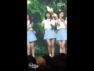 """· fancam · 160505 · oh my girl - """"one step two step"""" (yooa focus) · mnet """"m!countdown"""" ·"""