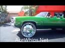 Zoe Gotti's Chevy Vert on 30 Forgiatos Slidin Out WTW Broward
